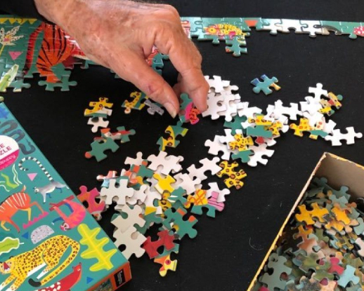 buy puzzle products sbcornerstore.com